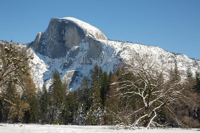 Yosemite Fire Falls-0392