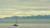 Oympic Mountains from Ogden Point