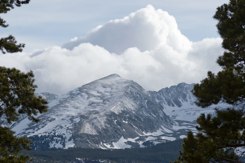 Breck_5813