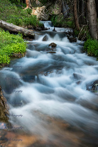 Stream by the Guanella Pass was running pretty fast. I wish the wildflowers would have been blooming today July 6 2019. I guess I'll have to come up in another week ok two and re-shoot this stream.