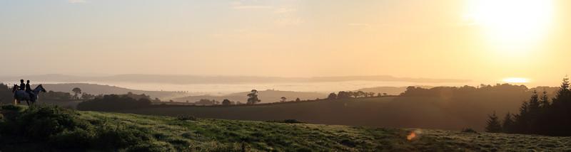 Exe Estuary Morning