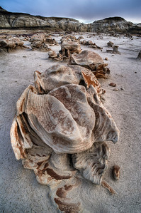bisti-wilderness-46_47_48_49_50