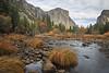 Yosemite 11-12-13 _N5A0341