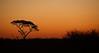 Botswana2007_063