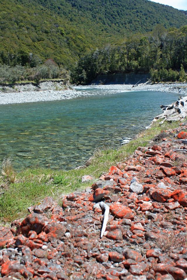 Neena River, NZ