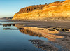 Torrey Pines State Park and the winter sun