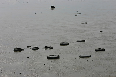 Tires, Low Tide