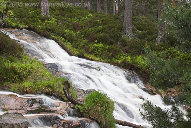 Waterfall in Glenfeshie, Cairngorms, Scotland