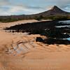 Beach Scene-Cerro Dragon-Galapagos