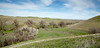 Bruces Oak Valley-1382