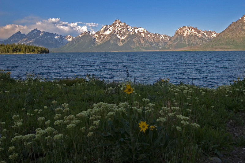 Jackson Lake.  Grand Teton National Park