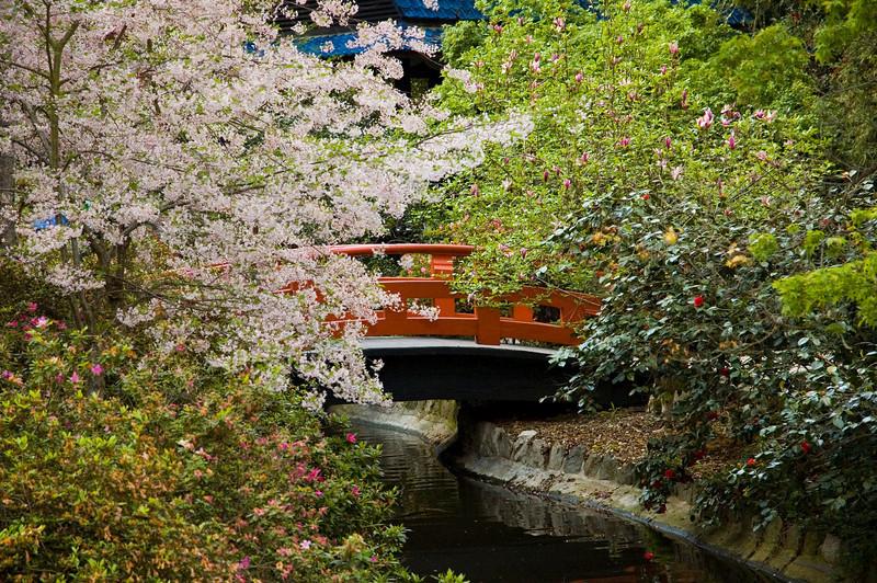 39_bridge