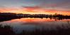 Yuma Sunrises_N5A0895-Edit