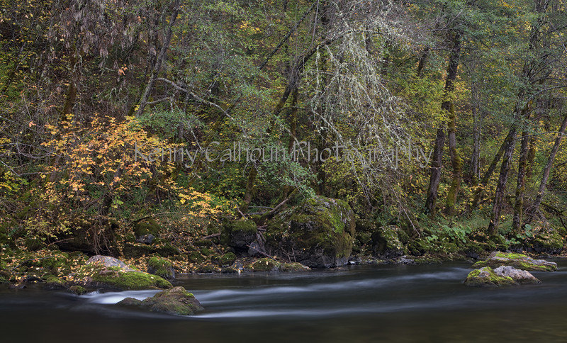Trinity_River_Riverscapes_November_01,_20121N5A5261untitled