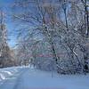 Minnehaha Trail in Snow