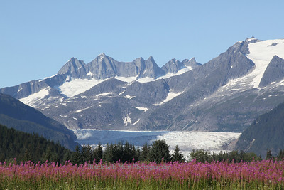 Mendenhall Towers, Mendenhall Glacier and Fireweed