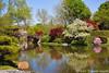 N20100412_0241<br /> <br /> Spring Bursts Forth