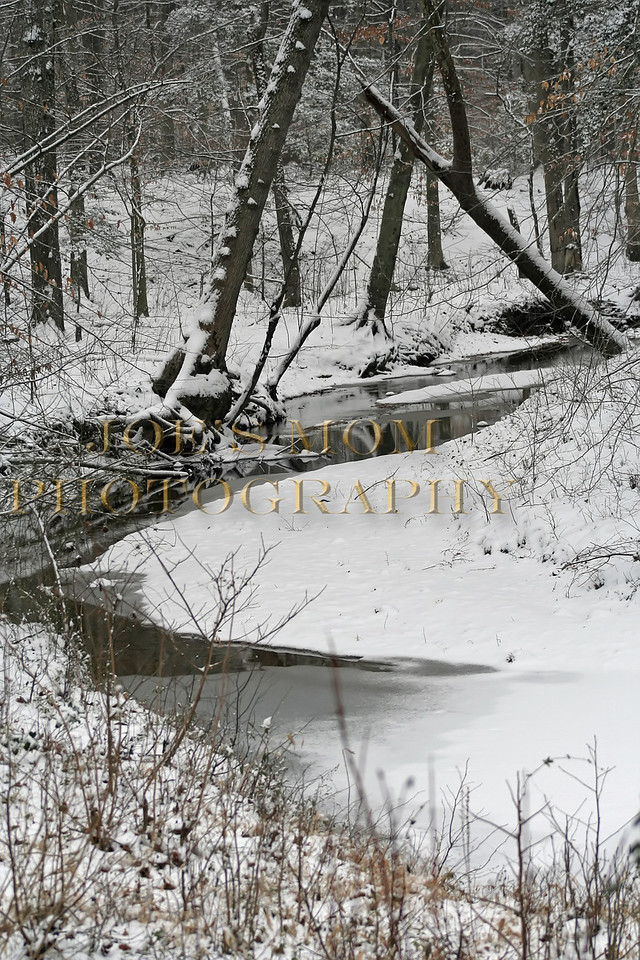 Snowy Creek Bed II