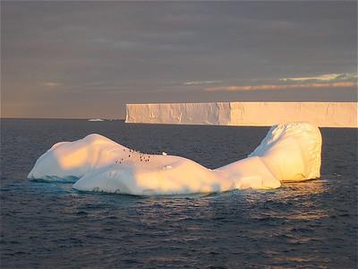 Antarctic Sound, Antarctica.