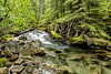 Kuatz Creek, Mount Rainier