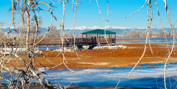 1/5/19 this is the eagle viewing area out at Barr Lake State Park.