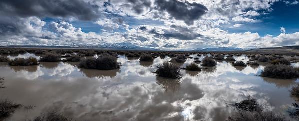 Desert Rain 1