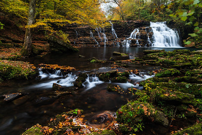 Fall colors at Rutledge Falls.  Coffee County, TN.