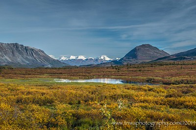 Breathtaking Views Along the Denali Highway Denali Highway Alaska © 2014  TNWA Photography / Debbie Tubridy