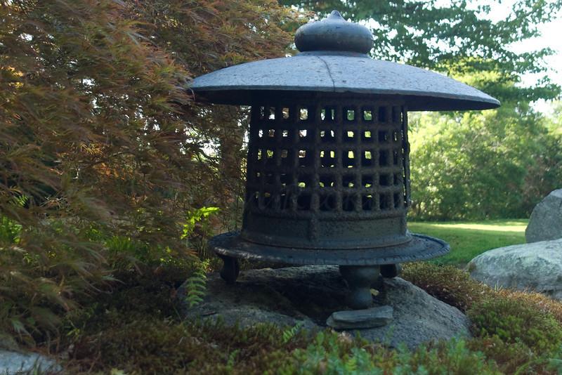 Oriental Lantern, Blithewold Arboretum