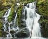 Mashel Falls, Eatonville WA