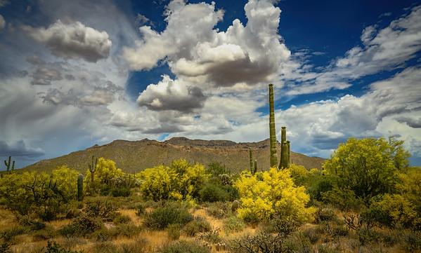 Pass Mountain, Mesa, AZ