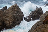 Point Lobos _N5A8204