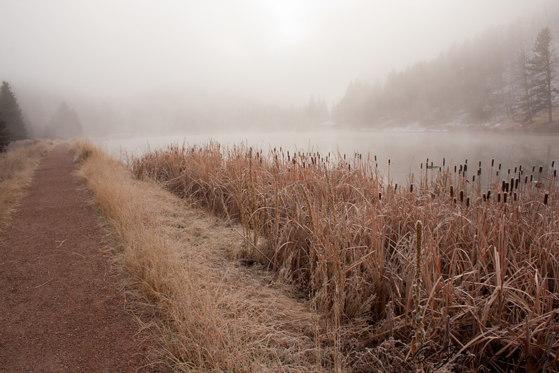 Misty sunrise at Pine Valley State Park<br /> CO