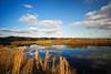 Alachua Sink <br /> Paynes Prairie Preserve State Park<br /> Gainesville, Florida<br /> © 2010