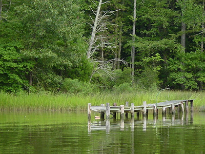Another seemingly abandoned dock on Meyer's Creek in the Northern Neck, Va.