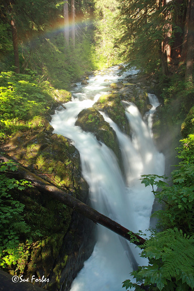 Rainbow at Sol Duc Falls<br /> Rainbow at Sol Duc Falls, Olympic National Park