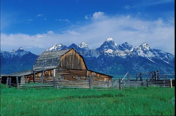 Morman Barn Landscape