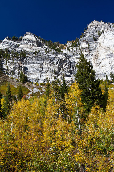 Little Cottonwood Canyon<br /> Wasatch Mountains<br /> Utah