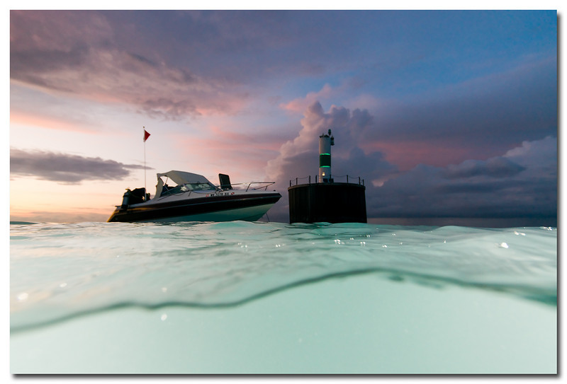 I was diving near the channel marker just before sunset. The water look was improved because the strobes were underwater.