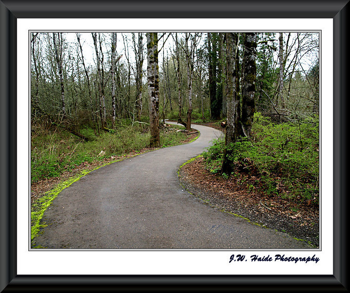 Path at Rood Bridge Park in Hillsboro, Oregon