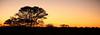 Botswana2007_150