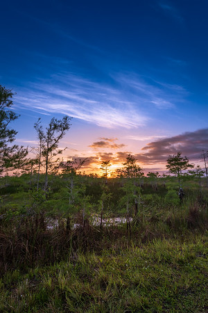 Everglades Sunrise - Everglades National Park, FL