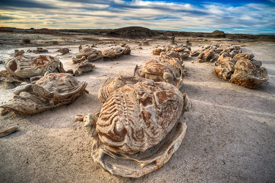 bisti-wilderness-31_2_3_4_5