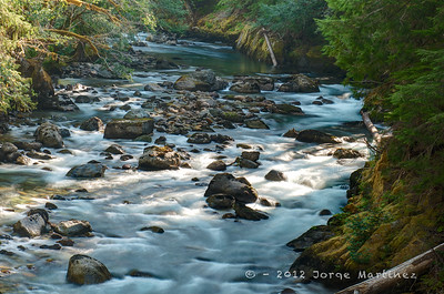 Mt  Rainier - Summer 2012 290