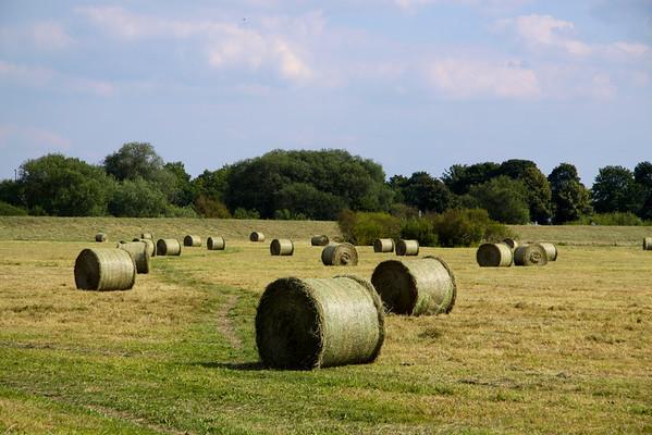 Hay Bales in York