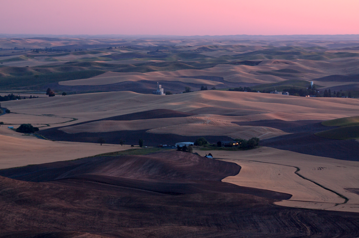 Steptoe Butte / Palouse / Washington<br /> <br /> This is a different view from the Steptoe Butte with the harvest nearly approaching. The wheat field had turned brown and the rolling hills reflected the pink colour of the sunset. I love going to this place again and again as it looks totally different in different seasons