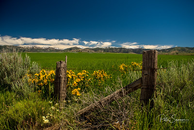 Prairie, Idaho