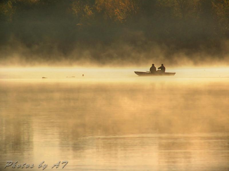 Lake 33<br /> Busch Wildlife Area