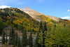 Fall colors near Red Mountain Pass Colorado, September 26 2011.