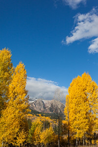 Colorado Mountain Framed With Aspens